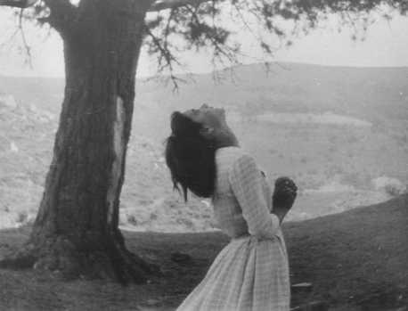 communion mystique sous les pins